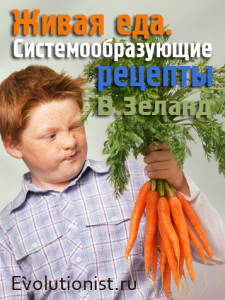 живая и здоровая еда